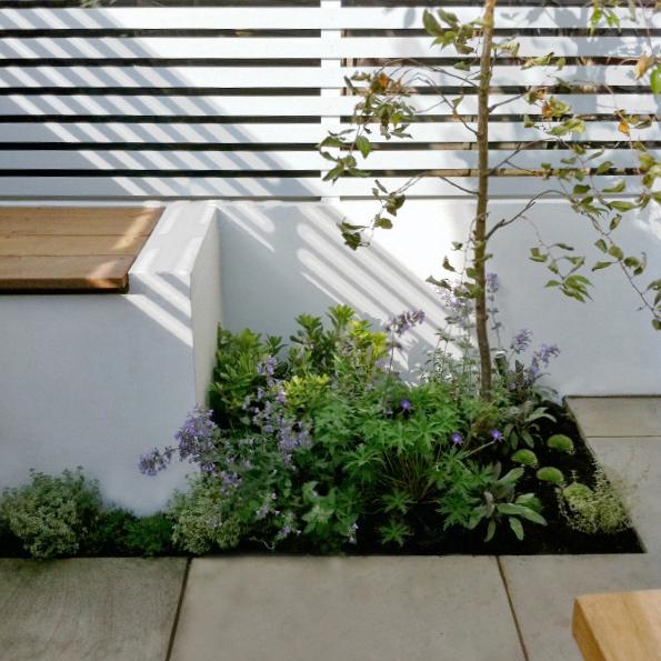 Andrea's Courtyard 3