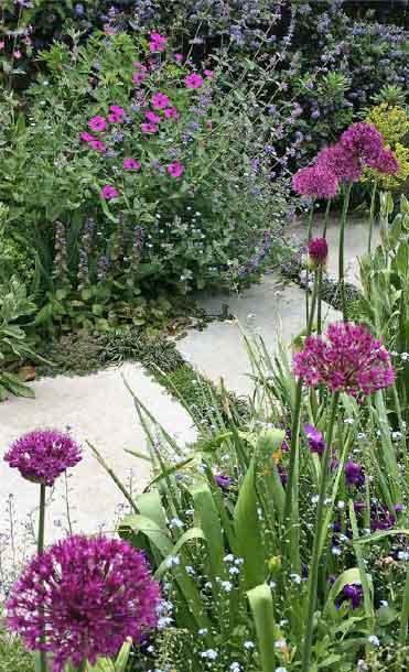 Outer space garden design for Outer space gardens