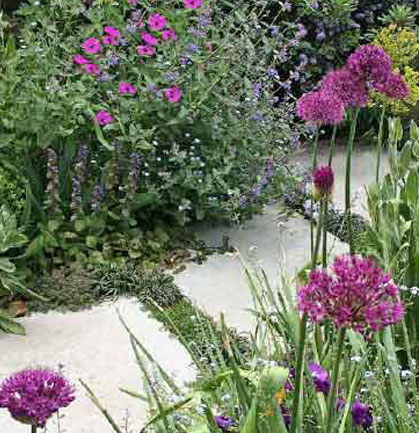 A Pretty Cottage In This Conservation Area, Needed A Modern Cottage Garden  To Create The Right Atmosphere. Soft And Colourful Planting Frames The  Generous, ...